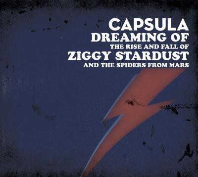 "CAPSULA ""Dreaming of the rise and fall..."" CD"