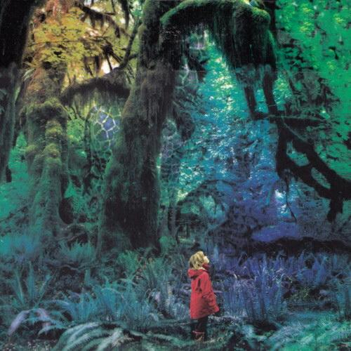 "JACCO GARDNER ""Cabinet of curiosities"" LP"